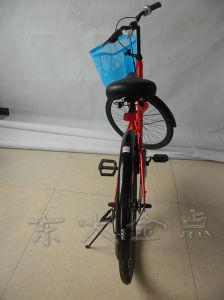 Public Bike-The Intelligent Campus Public Portable Bike pictures & photos