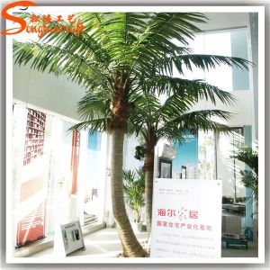12f Indoor Decor Artificial Coconut Palm Tree Made of Fiberglass pictures & photos