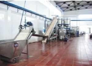 Stainless Steel Automatic Tomato Paste Machine pictures & photos