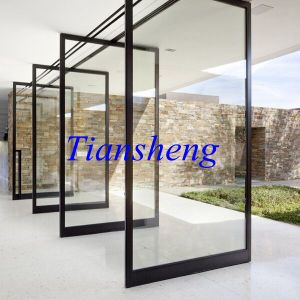 Professional Manufacturer Supply Aluminum Framed Glass Floor Pivot Doors pictures & photos