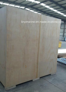 Plywood Box pictures & photos