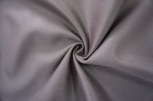 Wool Fabric for Suiting 30W50p20V pictures & photos
