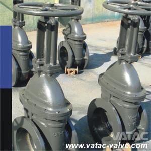 CS/Ss Cl150&300#&600lbs Flanged R. F/F. F/R. T. J Gate Valve pictures & photos