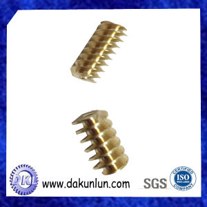 Custom Small Size Worm Gear pictures & photos