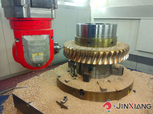 Worm Gear Set pictures & photos
