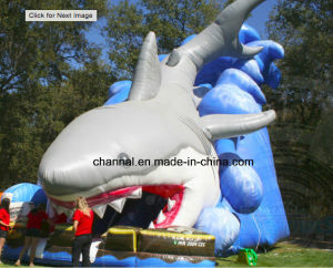 Factory Direct Inflatable Slide Shark Big Slide for Water Games pictures & photos