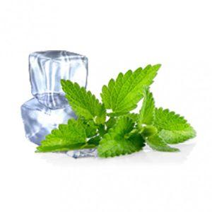 Safe Healthy Original Menthol Flavor E-Cigarette Liquid (Mint&Herbs) pictures & photos