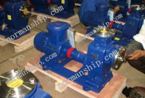 Horizontal Self Priming Centrifugal Pumps pictures & photos