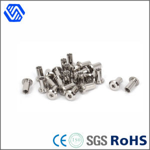 Pan Head Hex Socket Rivets Polished Stainless Steel Rivet pictures & photos