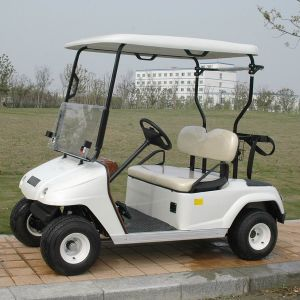 CE Approve Electric 2 Person Golf Cart for Sale (DG-C2) pictures & photos