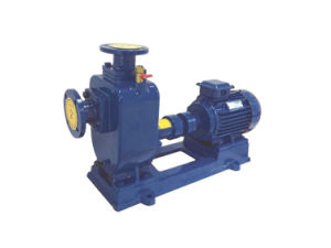 Trash Self Priming Centrifugal Water Pump pictures & photos