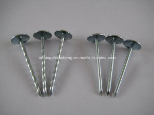 Q195 Galvanized Umbrella Head Roofing Nails with Smooth Shank pictures & photos