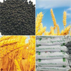 Qingdao Future Group 70% Humic Acid Granular Organic Fertilizer pictures & photos