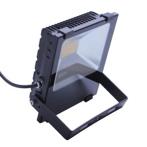 Flood Light 50W pictures & photos