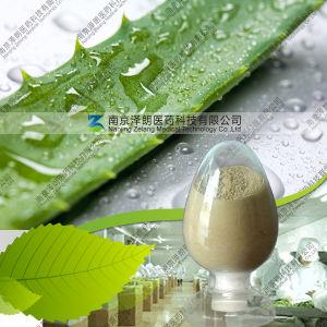 Aloe Vera Extracted Powder Aloin 10%-99%
