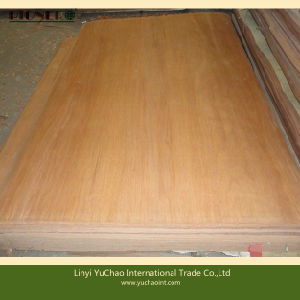 4′x6′x0.3mm Natural Wood Plb Rotary Cut Veneers pictures & photos