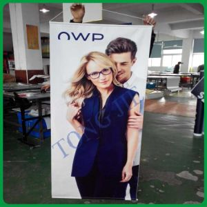 Promotional Hanging Scroll /Banner in Shanghai (TJ-012) pictures & photos