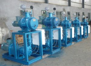 Zyv Vacuum Pump Unit pictures & photos