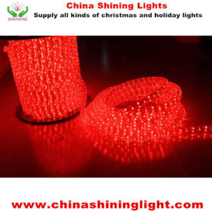 Good Quality Christmas Decoration LED Holiday Lights pictures & photos