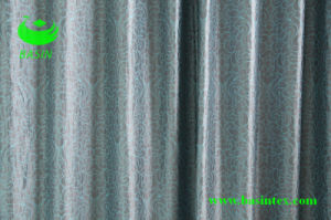 Jacquard Curtain Fabric (BS1090) pictures & photos