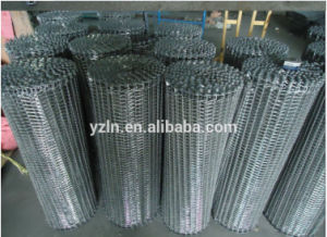 Conveyor Mesh Belt for Freezering Food Processing pictures & photos