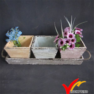 Colorful Antique Wooden Flower Pot with Tray for Garden pictures & photos