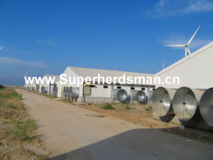 Over Valued Full Set Poultry Farm Equipment pictures & photos