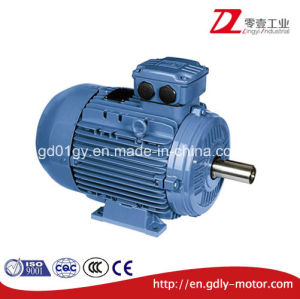 250HP Aluminum Induction Motor for Pump pictures & photos
