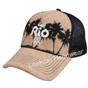 (LPM15187) Panama Paper Men Straw Hats pictures & photos