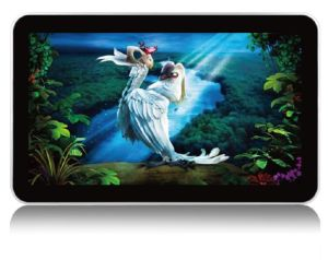 22-Inch Wall Mounted LCD Panel Advertising Display