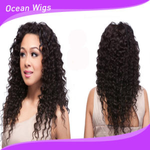 Fashion Hair Style Wholesale Brazilian Vrigin 100% Full Lace Human Hair Wig pictures & photos