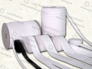 Custom Nylon/Polyester Elastic Webbing pictures & photos