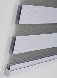 Combi Blinds, Day & Night Blinds for Home Decor New Design pictures & photos