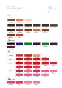 Mastor Brand FDA Eyebrow Tattoo Makeup Pigment pictures & photos