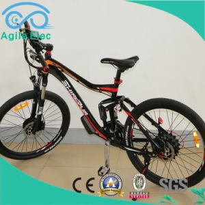 36V 250W Brushless Motor Drived Electric Bike with Lithium Battery pictures & photos