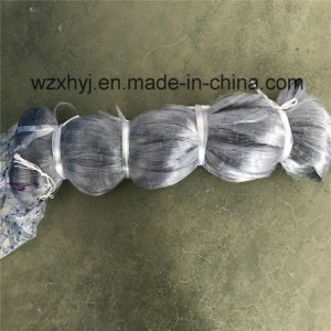 0.20mm X 30mmsq X 75MD X 150m Nylon Monofilament Fishing Net pictures & photos