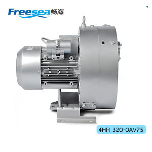 Ultra-Quiet High Suction Vacuum Air Pump Motor Blower pictures & photos