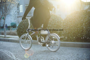 250W Electric Scooter with 36V/5.8ah pictures & photos