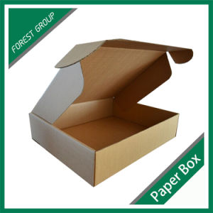 Paper Mailing Corrugated Carton for Wholesale pictures & photos
