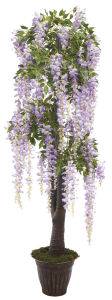 Beautiful Artificial Flower Tree Westeria Bonsai Trees for Decoration pictures & photos