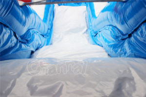 18 Feet High Tuna Inflatable Water Slide with Pool (CHSL283-1) pictures & photos