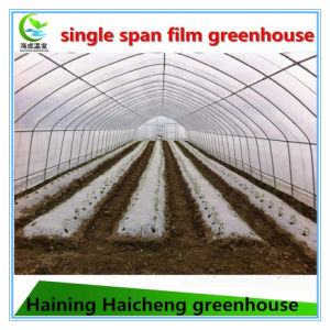 Hot DIP Galvanized Steel Durable Film Green House for Cucumber pictures & photos
