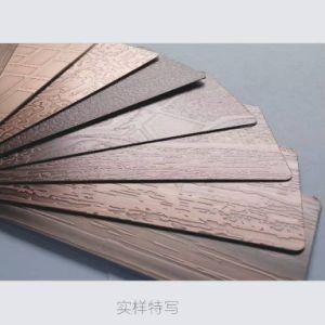 Steel Door Steel Products Bronze Color Stainless Steel Sheet pictures & photos