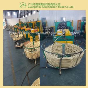 Wire Braided Hydraulic Hose (EN853-1SN-1/4) pictures & photos