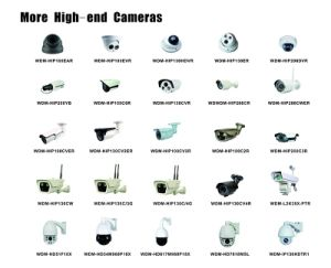 P2p Day Night Home/Business Security 360 Panoramic IP Camera pictures & photos