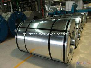 Hot Dipped Galvanized Steel Sheet in Coils/HDG Steel Coils/Zinc Coated Steel Coils pictures & photos