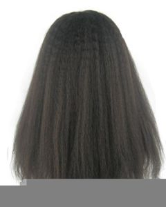 "8""-26"" Kinky Straight Lace Front Wig pictures & photos"
