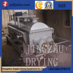 Double Shaft Hollow Blade Dryer pictures & photos
