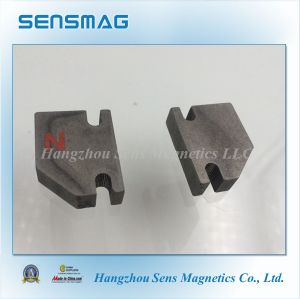 Ts16949 Strong Powerful Permanent Aluminum Nickel Cobalt Magnet for Generator pictures & photos