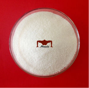 GMP Standard Lidocaine Hydrochloride / Benzocaine/ Lidocaine HCl Pharmaceutical Raw Material pictures & photos